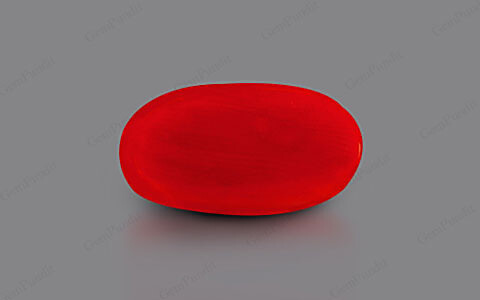 Red Coral - 4.92 carats