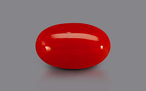 Red Coral - 6.37 carats