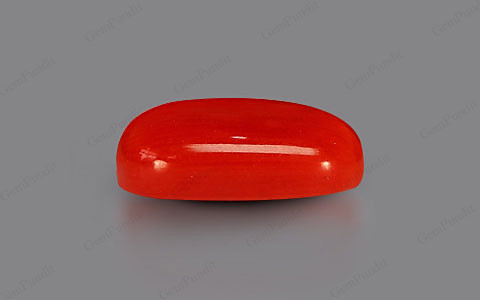 Red Coral - 6.09 carats