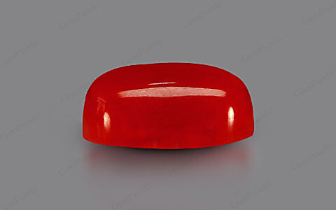 Red Coral - 6.22 carats