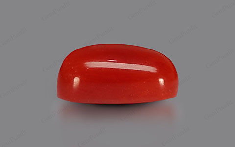 Red Coral - 6.59 carats