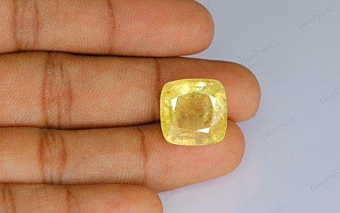 Yellow Sapphire - 24.10 carats