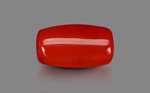 Red Coral - 4.86 carats