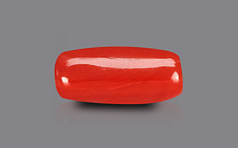 Red Coral - 6.19 carats