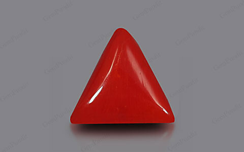 Red Coral - 5.23 carats
