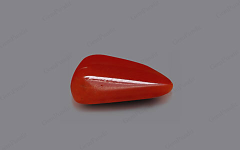Red Coral - 5.71 carats