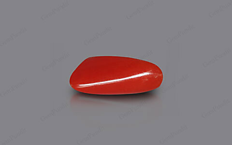Red Coral - 5.44 carats