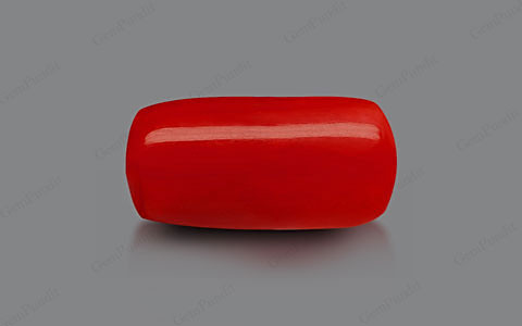 Red Coral - 8.70 carats