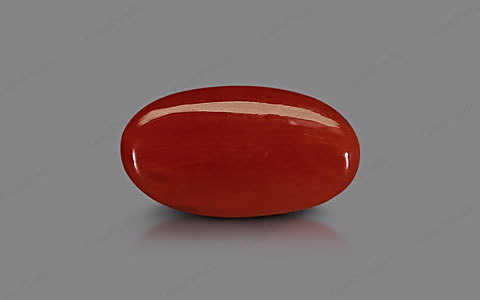 Red Coral - 5.20 carats
