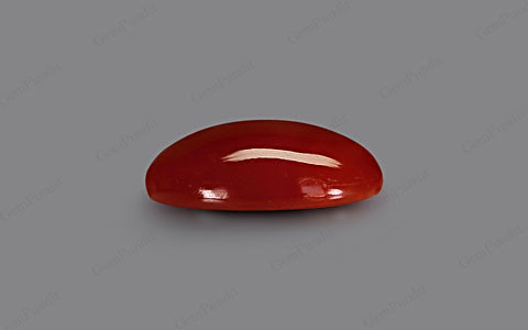 Red Coral - 6.28 carats