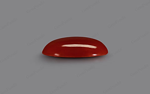 Red Coral - 7.29 carats