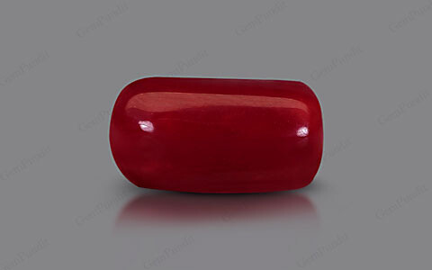 Red Coral - 5.53 carats