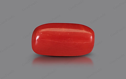 Red Coral - 2.78 carats