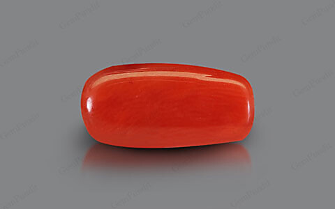 Red Coral - 2.52 carats