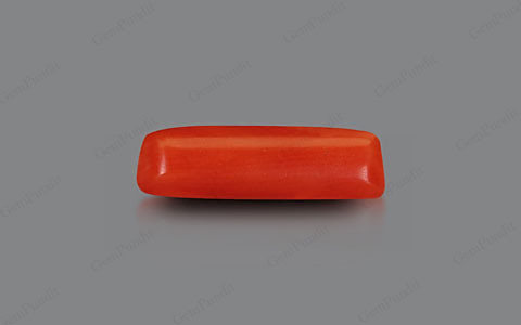 Red Coral - 2.02 carats