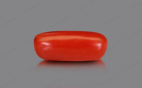 Red Coral - 2.20 carats