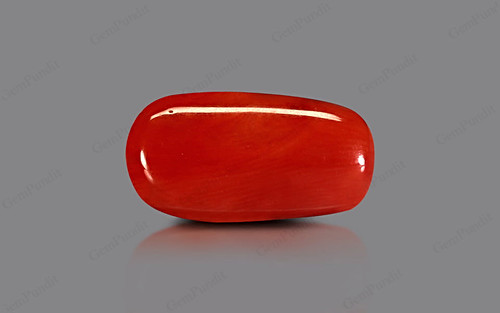 Red Coral - 9.52 carats