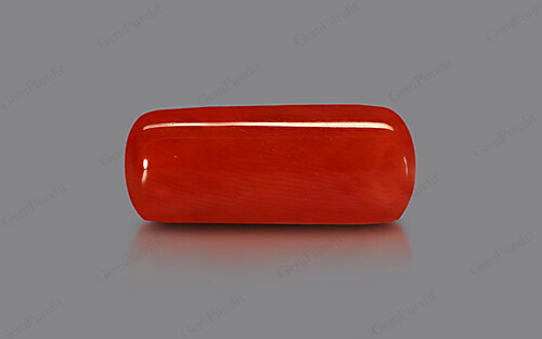 Red Coral - 11.88 carats