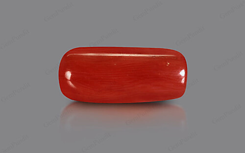 Red Coral - 9.36 carats