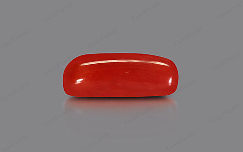 Red Coral - 9.64 carats