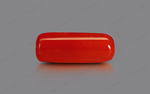 Red Coral - 10.67 carats