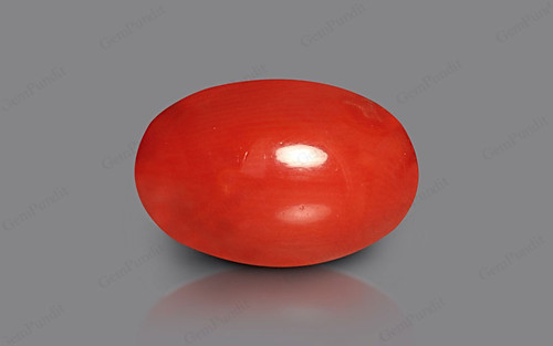 Red Coral - 6.38 carats