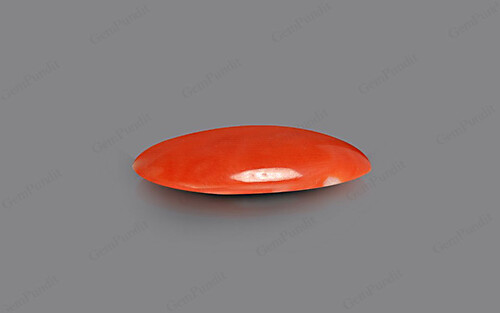 Red Coral - 9.12 carats