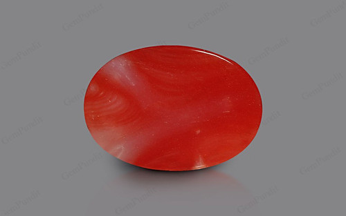 Red Coral - 4.27 carats