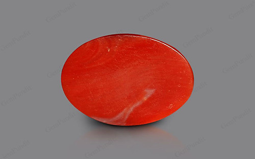 Red Coral - 4.69 carats