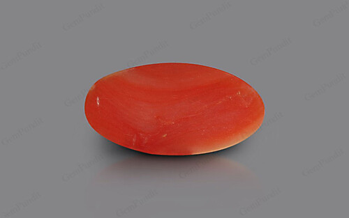 Red Coral - 4.28 carats
