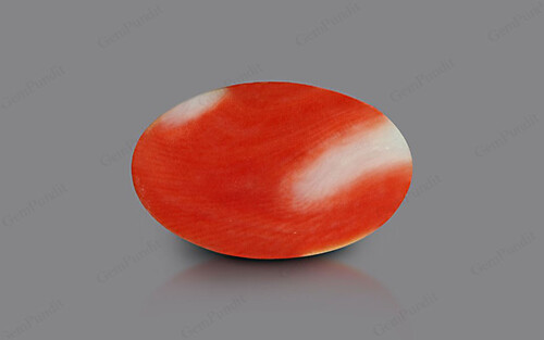 Red Coral - 4.35 carats