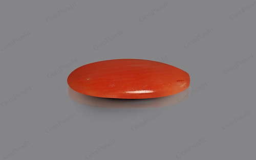 Red Coral - 1.98 carats