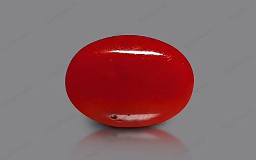 Red Coral - 8.52 carats
