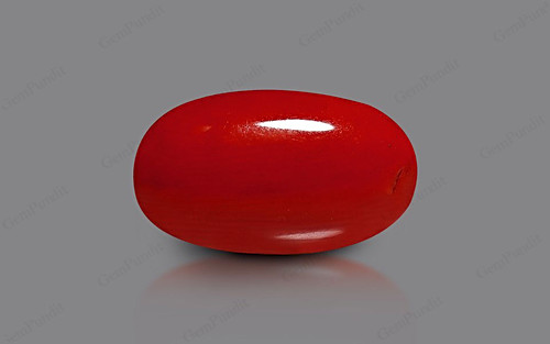 Red Coral - 7.37 carats