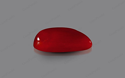 Red Coral - 5.25 carats