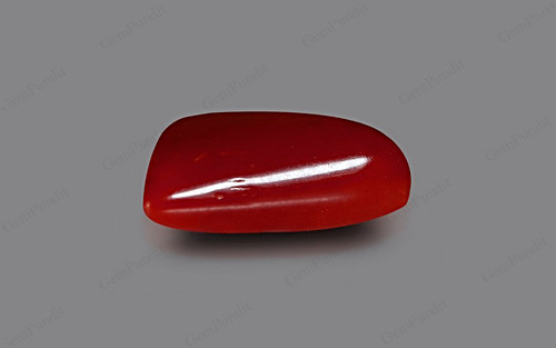 Red Coral - 4.74 carats