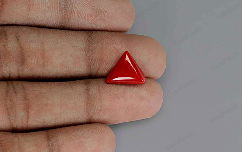 Red Coral - 5.26 carats