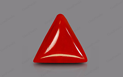 Red Coral - 4.94 carats