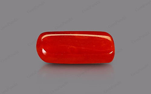 Red Coral - 3.12 carats