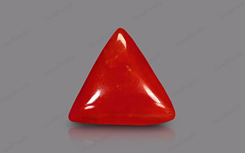 Red Coral - 8.83 carats