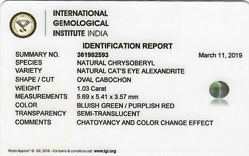 Alexandrite Cat's Eye - 1.03 carats