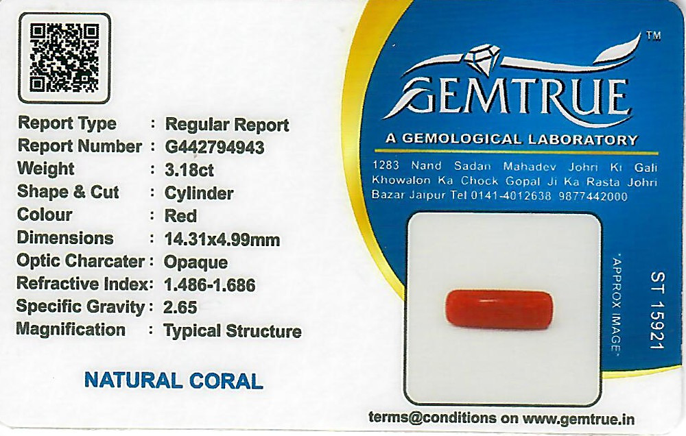 Red Coral - 3.18 carats