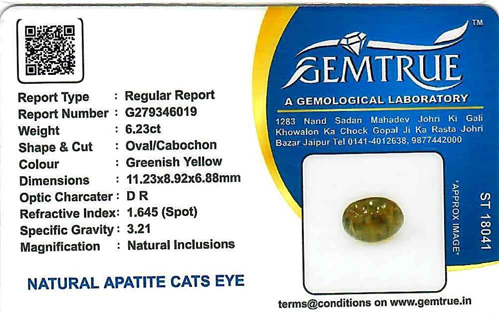 Apatite Cat's Eye - 6.23 carats