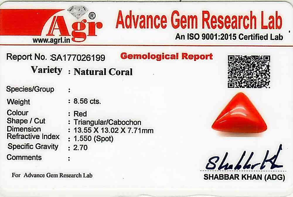 Red Coral - 8.56 carats