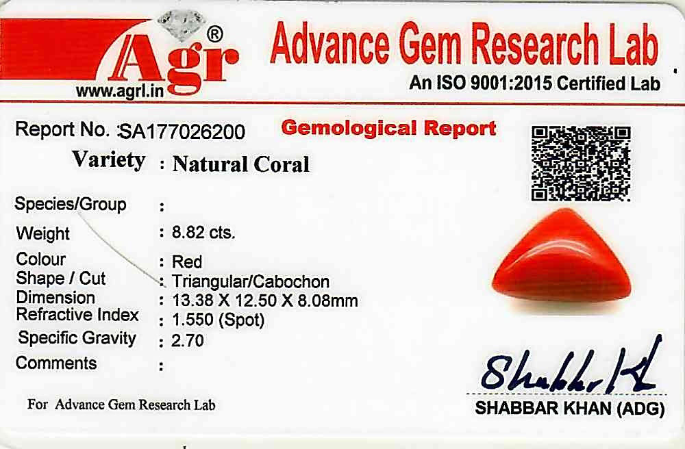 Red Coral - 8.82 carats