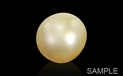 Golden South Sea (Cultured) Pearl - Luxury