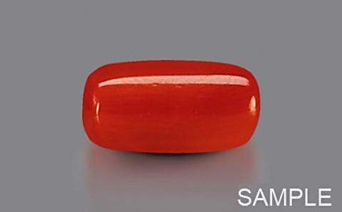 Red Coral - Capsule