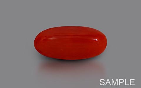 Red Coral - Dark Red (Luxury)