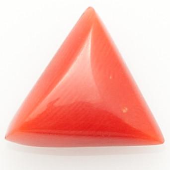 Red Coral - Premium
