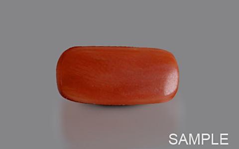 Red Coral (Desi Moonga)